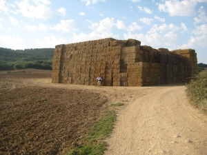 Just one stack of straw.  A byproduct of the wheat harvest.