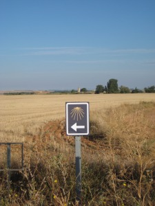 Camino Sign in the Grainfields.
