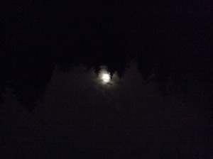 The moon at the ranch a few nights ago.