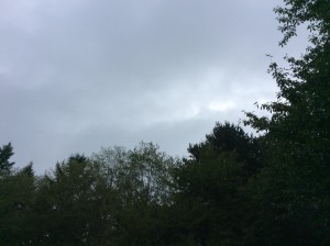 Still cloudy, the day after the big rain storm.