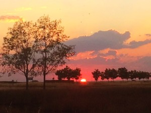 The end of the day on the Meseta.