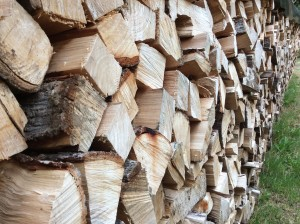 A chill in the air, fall coming and time too take a pic of the firewood waiting to bring warmth.
