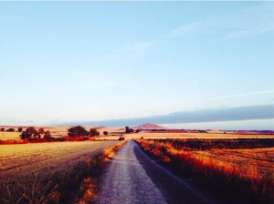 Morning along the Camino in August 2014.  Were we vulnerable?  Vulnerable to learning something new is all.