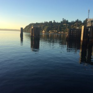 Looking south from the north end ferry dock.