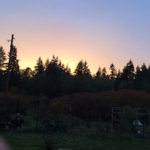 """Sunset last night saying, """"So far so good!"""""""